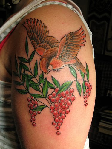 real bird colour nature tattoos art design