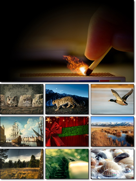 hd widescreen wallpapers. HD Widescreen Wallpapers Pack