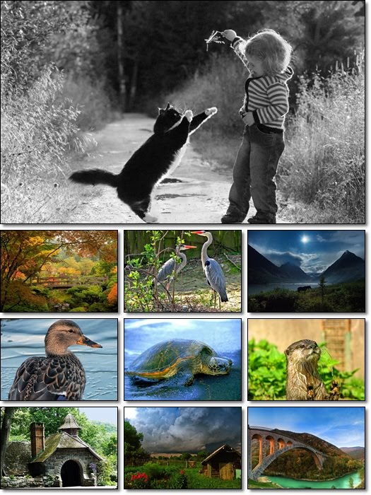 World In Photo Pack 2
