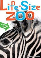 http://2.bp.blogspot.com/_YSy_RzgZt5g/TQ3wQP8uXZI/AAAAAAAAEUk/nsseQ7LoMjU/s1600/zoo1.jpg