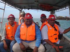 Site Audit Team (2006)