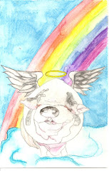 PIG ANGEL SYMPATHY CARDS