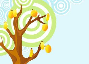 orange webdesign