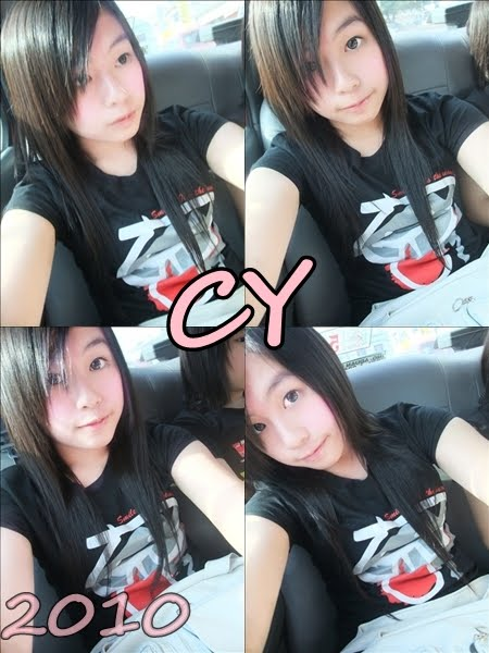 CY 2010