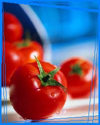 manfaat-buahtomat