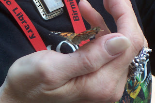 Library Butterfly on Mary's hand