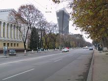 Portofolio - Proiecte 2000-2007
