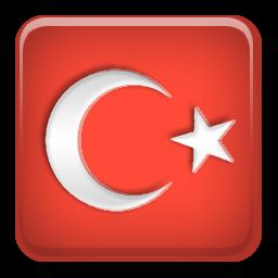 Türk bayrağı 5
