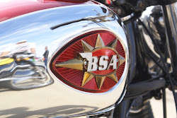 BSA reflection