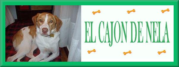 EL CAJON DE NELA
