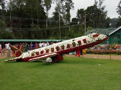 Ooty Flower Show Plane still