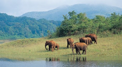 Periyar Wildlife Sanctuary- Tekkady