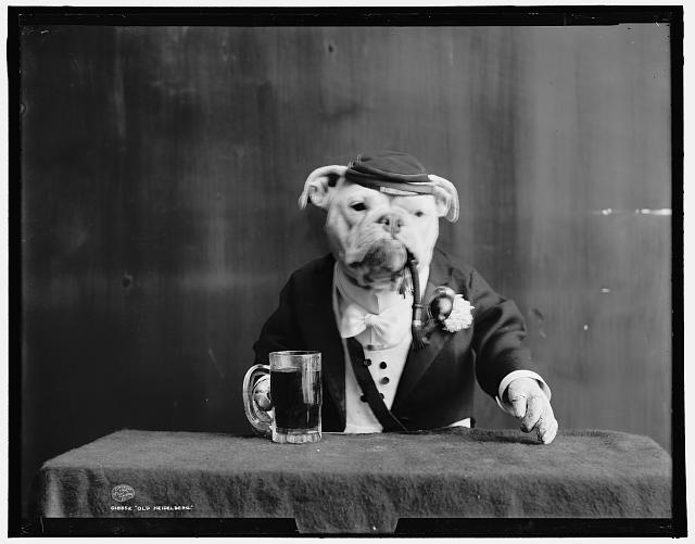 IMAGE(http://2.bp.blogspot.com/_Y_CvIxe4gBg/TE8zxBds0_I/AAAAAAAAPb0/kXJrz2At4hY/s1600/dog_smoking_drinking.jpg)