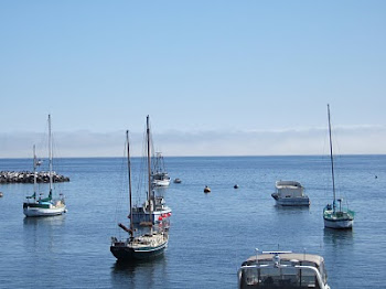View from Fisherman's Wharf, Monterey
