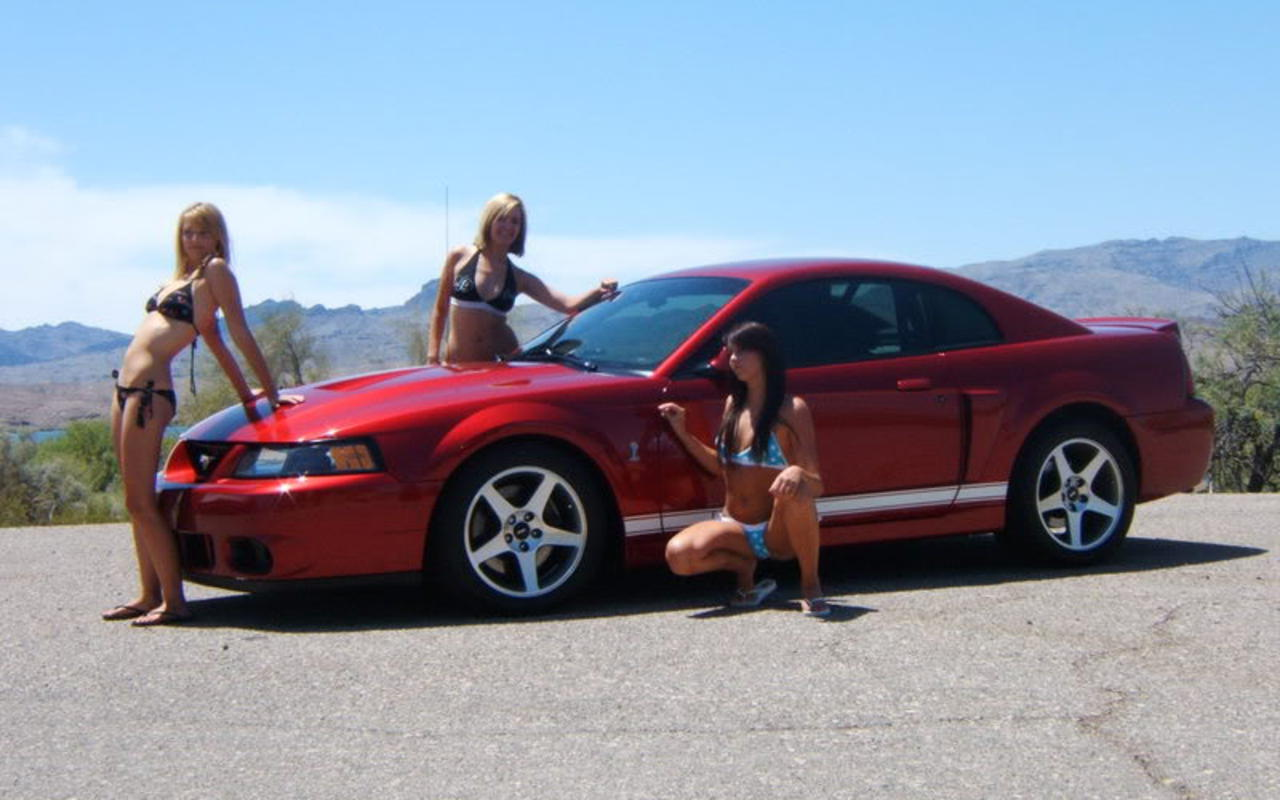 Girls On Ford Mustangs