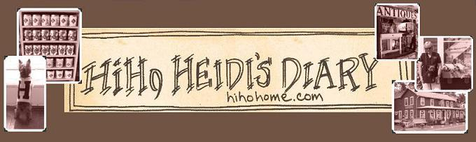 Heidi's Diary