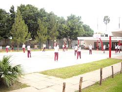 Actividades de Colegios