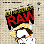 Raw  DJ Needles