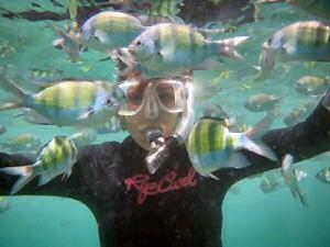 Phi Phi Leh Island Thailand