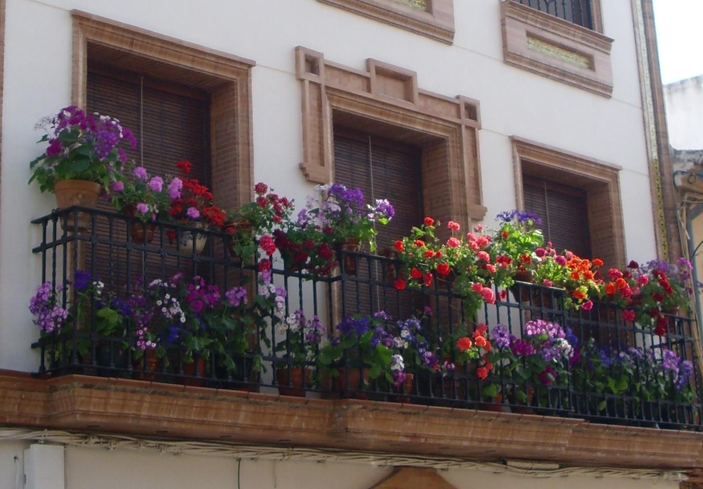 Puente genil es mi blog balcones pontanenses con encanto - Balcones pequenos con encanto ...