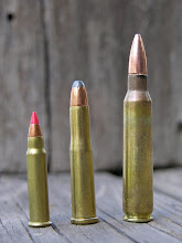 The .22 Hornet flanked by the .17 Hornady Magnum Rimfire and the .223 Remington.