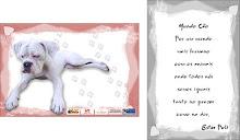 Cartão Poema - Lançamentona 26ª Feira do Livro de Canoas-RS