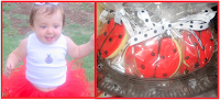 Allison's Ladybug Party
