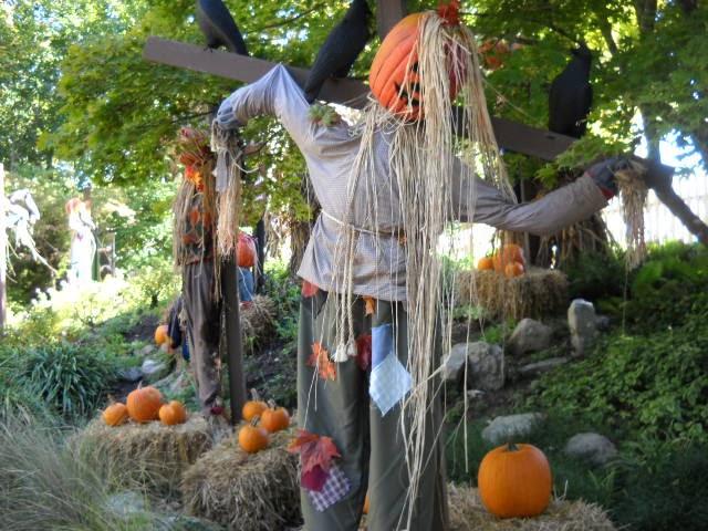 Celtic Pumpkin Howl O Scream At Busch Gardens