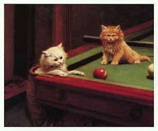 Snooker Kittens