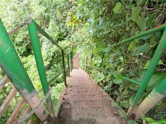 Escada na trilha que dá acesso para a cachoeira
