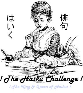 haiku sushi kc