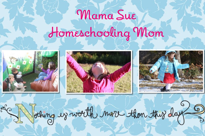 Mama Sue Home Schooling Mom