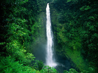 Akaka Waterfalls wallpaper