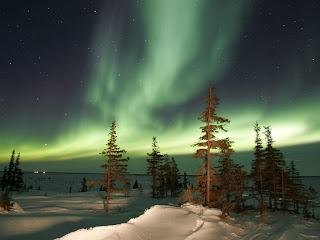 3D Aurora wallpaper and photo