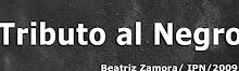 Tributo al Negro / Beatriz Zamora