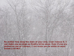 No matter how deep the stain of your sins. I can remove it. I can make you as clean as fresh snow.