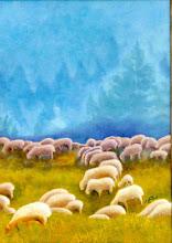 "Corderos / Moutons "" Drôme"" Francia - Jicé"