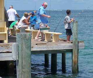 Southwest florida shoreline studies fishing at rod reel for Best pier fishing rod