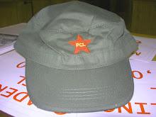 Cappellini PCL