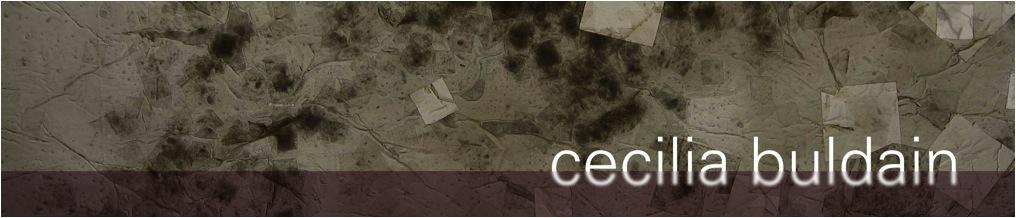 Cecilia Buldain-visual