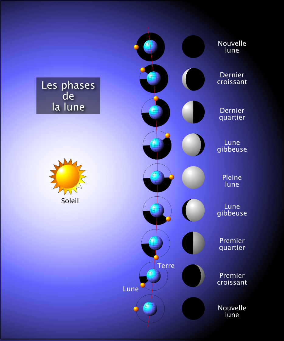 Displaying 19> Images For - Moon Phases For Kids In Order...