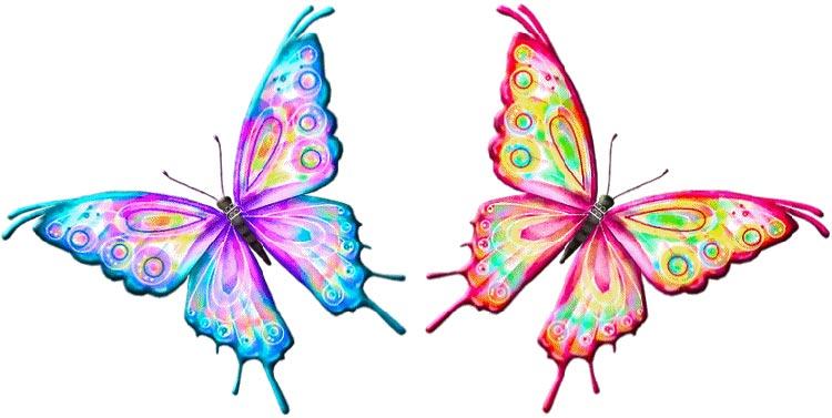 dise os de mariposas imagui
