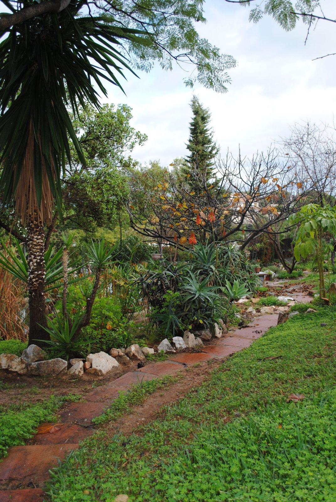 Un jardin bajo los pinos for Capillas de velacion jardin de los pinos