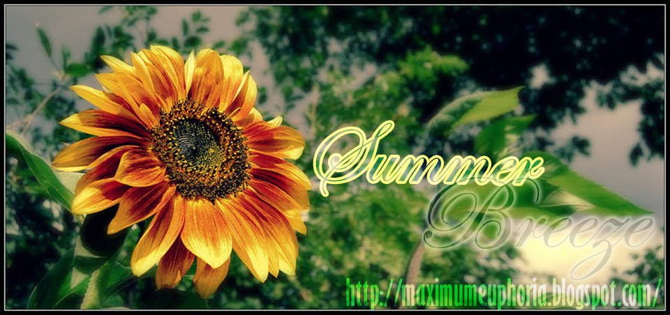 .::FEEL THE SUMMER BREEZE::.