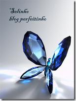 Blog Perfeitinho