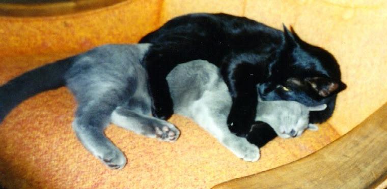 Oscar and Rudy