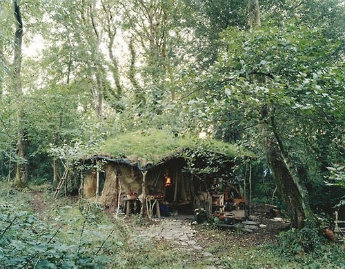 Beautiful art treehouses hobbit houses and amazing dwellings - Houses woods nature integrated ...