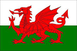 Y Ddraig Goch!