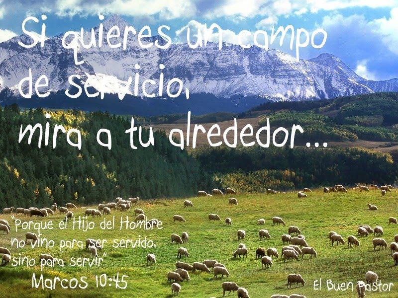 YO SOY EL BUEN PASTOR: Marcos 10:45