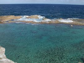 La barriere de corail de Petite Terre